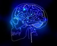 Brain2 - 200